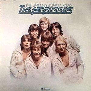 Immagine per 'Bo Donaldson and the Heywoods'
