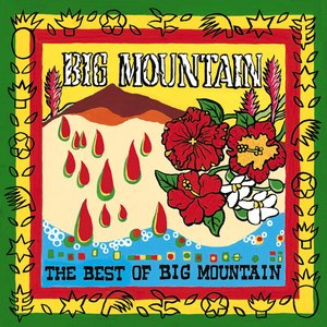 Immagine per 'The Best of Big Mountain'