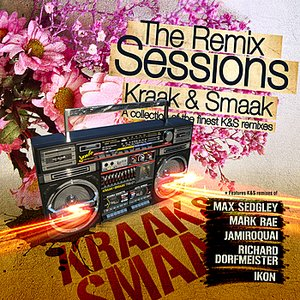 Image for 'The Remix Sessions'