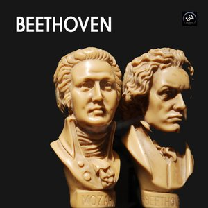 Image for 'Beethoven - Piano Sonata 09 Opus 14 - 1st Part'