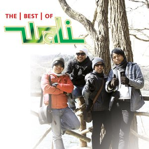 Image for 'The Best Of Wali'