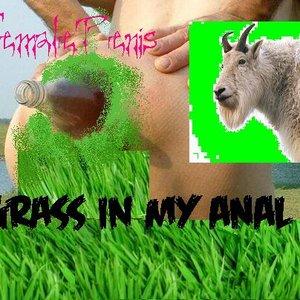 Imagem de 'Grass in My Anal'