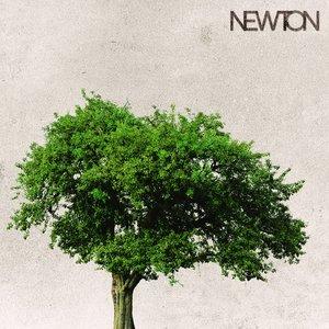 Bild für 'Newton'