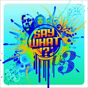 Image for 'Say What !?'