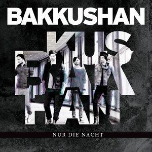Image for 'Nur die Nacht'