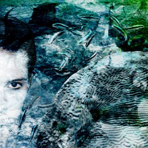 Image for 'Underwater Concert'
