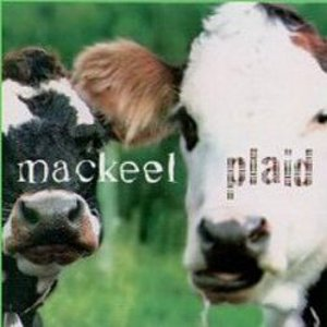 Image for 'Plaid'