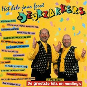 Image for 'Het Hele Jaar Feest'