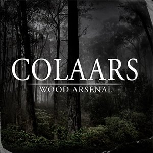 Image for 'Wood Arsenal'