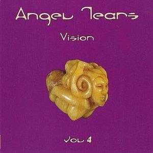 Image for 'Vision (Volume 4)'