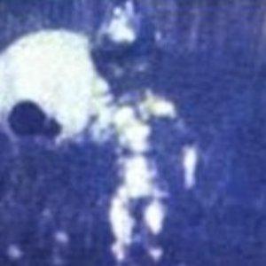 Image for 'Leonardism (2007)'