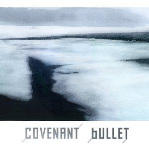 Image pour 'Bullet (Radio Edit)'