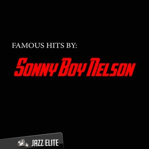 Image for 'Famous Hits by Sonny Boy Nelson'
