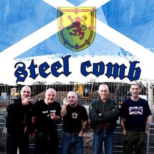 Immagine per 'Steel Comb'