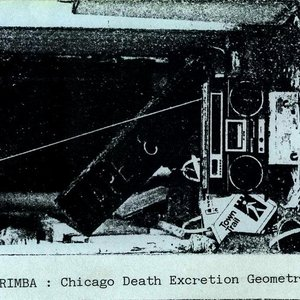 Image for 'Chicago Death Excretion Geometry'