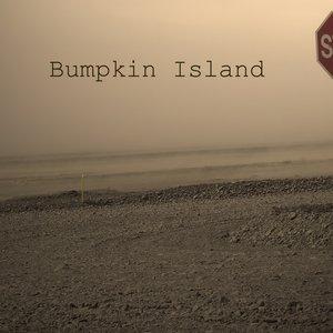Image for 'BUMPKIN ISLAND'