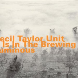 Image for 'It Is In The Brewing Luminous'
