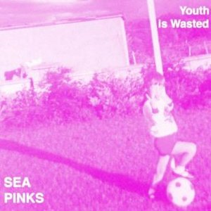 Image for 'Sea Pinks - Youth is Wasted'