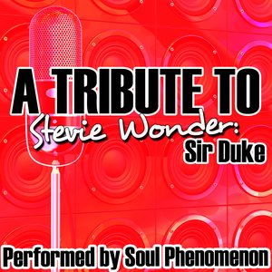Image for 'A Tribute To Stevie Wonder: Sir Duke'