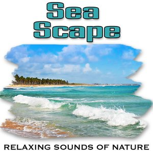 Image for 'Sea Scape (Nature Sounds)'
