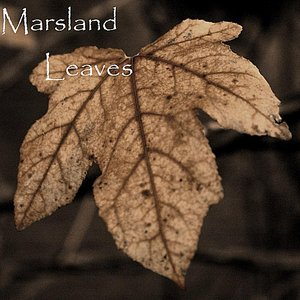 Image for 'Leaves'