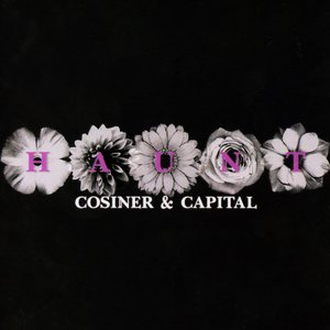 Image for 'Cosiner & Capital'