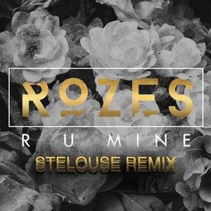 Image for 'R U Mine (SteLouse Remix)'
