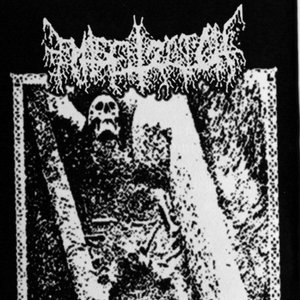 Image for 'Eternal Funeral Cries'