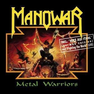 Image for 'Metal Warriors'