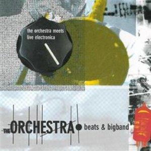 Bild för 'The Orchestra feat. Anders Trentemøller'