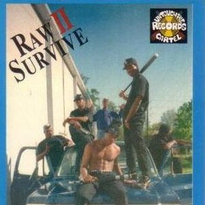 Image for 'Raw II Survive'