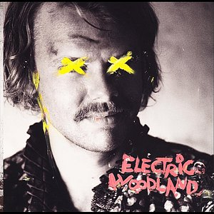 Image for 'Electric Woodland - EP'