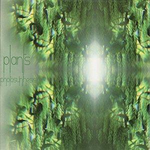 Bild für 'Photosynthesis'