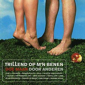 Bild für 'Is Dit Alles / Skik'