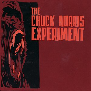 Image for 'The Chuck Norris Experiment'
