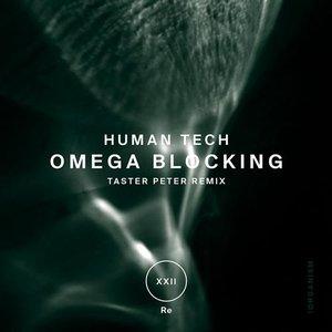 Image for 'Omega Blocking'
