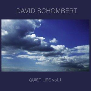 Bild für 'Quiet Life, Volume 1'