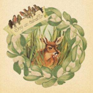 Bild für 'Robin (Tunng version)'