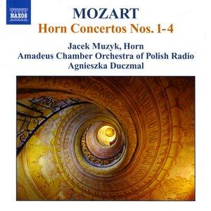 Image for 'I. Allegro maestoso (cadenza by J. Muzyk)'