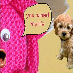 Image for 'You Ruined My Life'