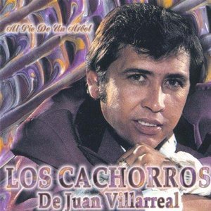 Image for 'Los Cachorros De Juan Villarreal'