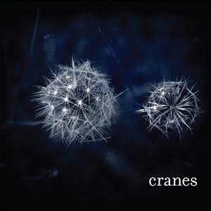 Image for 'Cranes'