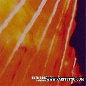 Image for 'Sulatronics'