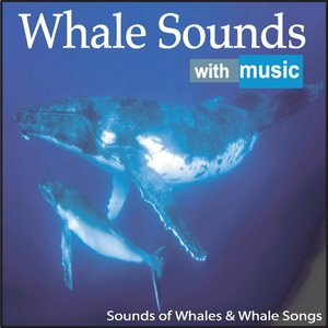 Image for 'Whale Sounds With Music: Sounds of Whales & Whale Songs'