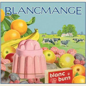 Image for 'Blancmange'