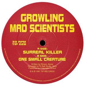 Image for 'Surreal Killer'