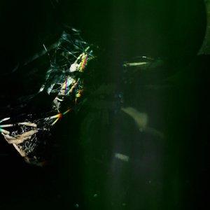 Image for 'Dark Green'