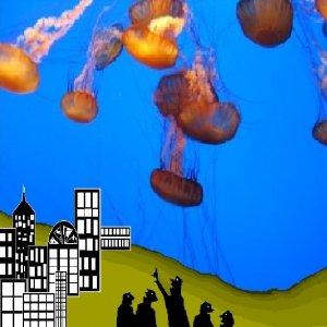 Image for 'Velma - Jelly Fish Rain'