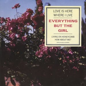 Image for 'Love is Here Where I Live'