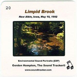 Imagem de 'Limpid Brook (New Albin, Iowa, May 10, 1992)'